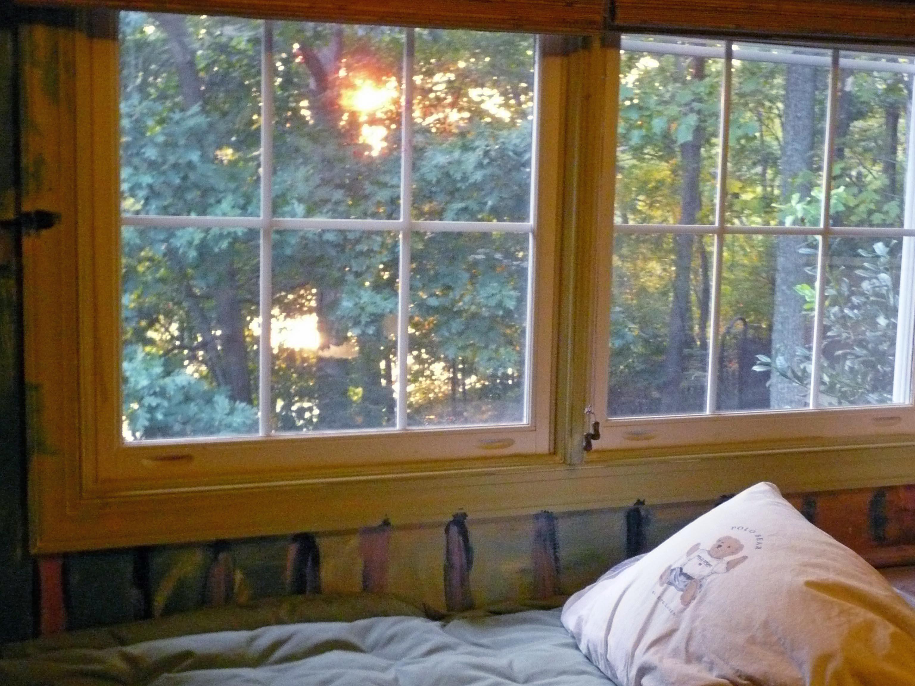 Justin's window